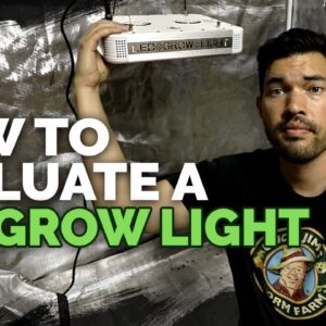 3 Things You MUST Know Before Buying an LED Grow Light 🌱💡