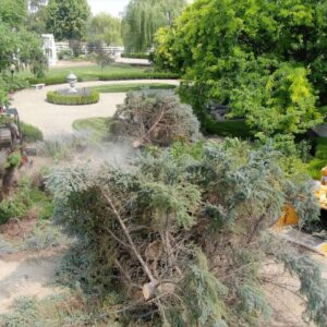 Storm Aftermath: Cleanup & Blue Spruce Removal 🥺🌲💚 // Garden Answer