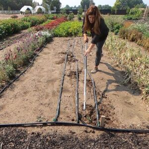 There's Still Time to Plant Flowers & Fall Veggie Crops from Seed! 💪🌱🌸 // Garden Answer