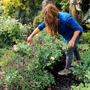 How We Maintain the Garden by Using Zones! TUESDAY Zone! 💚 // Garden Answer
