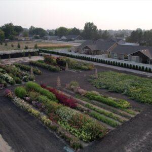 September Cut Flower Garden Tour! 🌸�💚 // Garden Answer