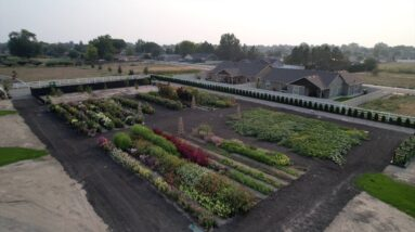 September Cut Flower Garden Tour! 🌸🍂💚 // Garden Answer