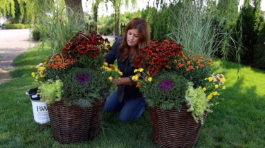 Packing These Fall Containers Full! 🍁🌼🍂 // Garden Answer