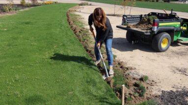 Edging the Grass Pathway to the Cut Flower Garden! 💪🌿🙌  // Garden Answer