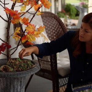 Fall Lit Branch DIY! 🍁🥰🍂 // Garden Answer