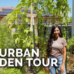 She Grows 50% Of Her Groceries At Home 🏡 | Suburban Garden Tour
