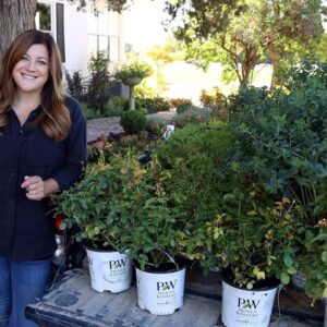 Planting Arbs, Roses, and Baptisia in the Garden! 🌿// Garden Answer