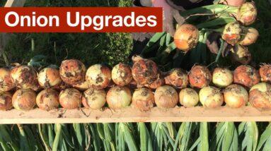 Onion Upgrades