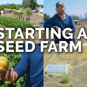Starting a Farm to Grow and Sell Seeds!