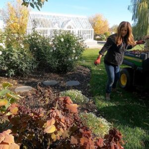 Starting Fall Flower Bed Cleanup! 🌾🍂🥀 // Garden Answer