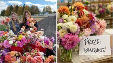 Last Big Vegetable & Flower Harvest! 🌿🌸🥰 // Garden Answer