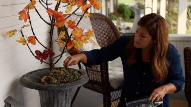 Create a Lit Fall Branch for Indoor our Outdoor Decor!