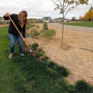 Finally Edging the Grass in the South Garden! 🌿🙌💪 // Garden Answer
