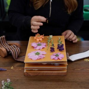 Tour of Plants with Pretty Berries & Filling My Flower Press! 💚🌸🍒 // Garden Answer